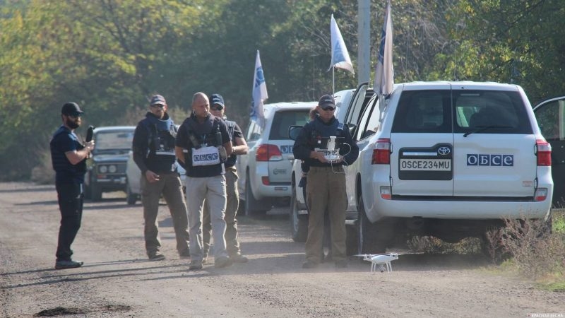 Ukrainian army saboteurs admit planning attack against OSCE mission